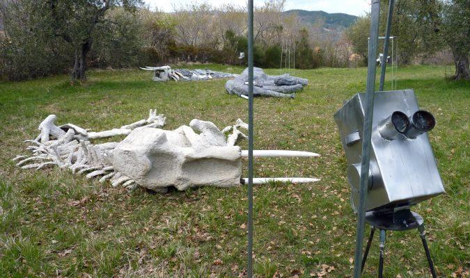 Artist Work 99 Giampaolo di Cocco Giardino di Daniel Spoerri Italy