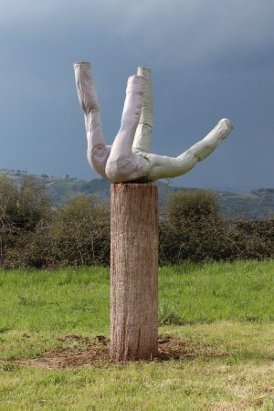 Artist Work Erwin Wurm Giardino di Daniel Spoerri Italy