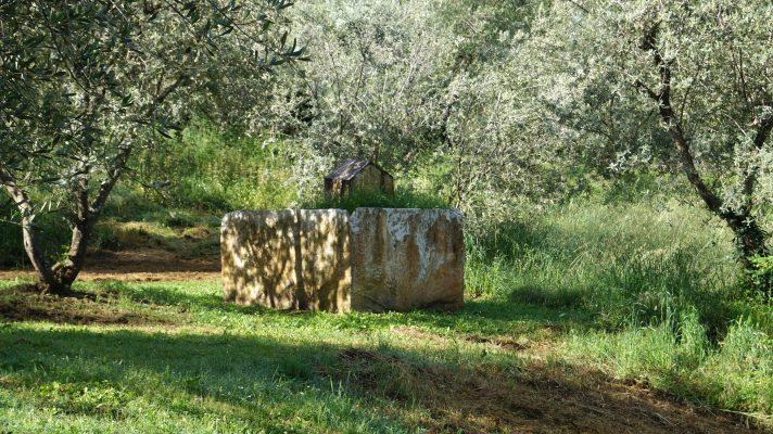 Artist Work 84-3 Graziano Pompili Giardino di Daniel Spoerri Italy