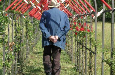 Künstler Daniel Spoerri im Skulpturenpark 9761
