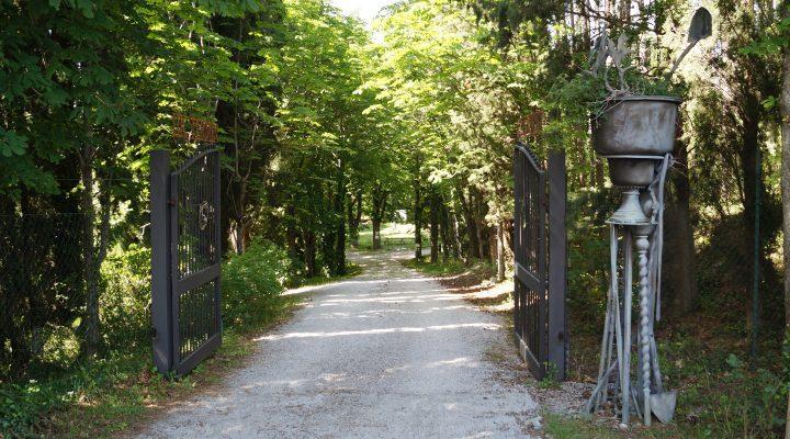 Ursi Luginbühl im Giardino di Daniel Spoerri 59