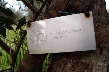 Stiftung Fondazione Il Giardino di Daniel Spoerri