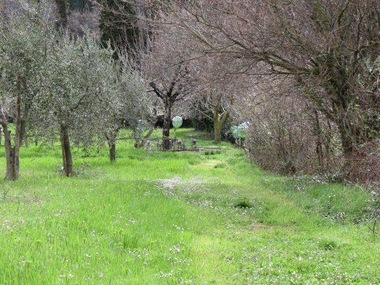 Garden View Il Giardino di Daniel Spoerri