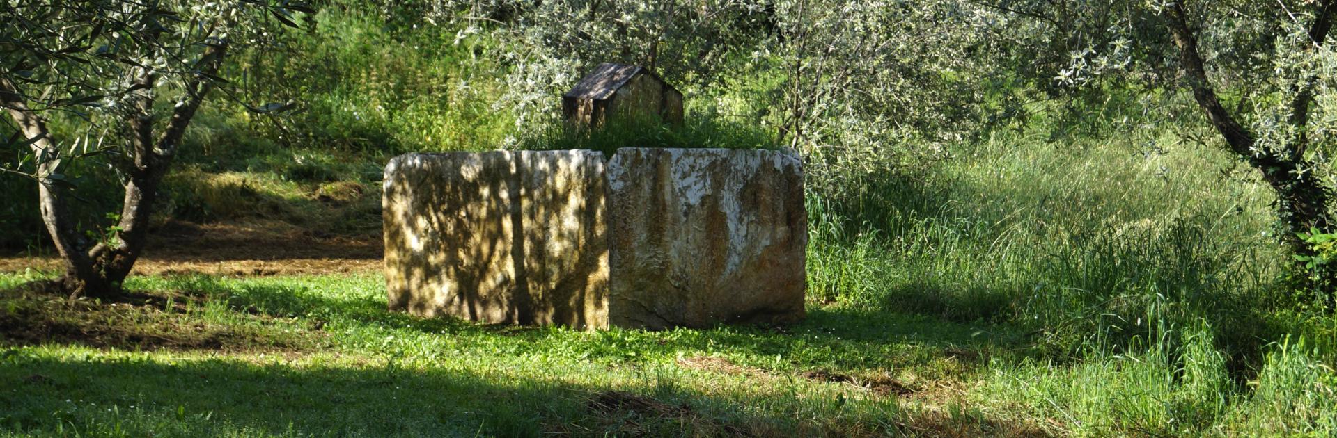 Header Graziano Pompili Giardino di Daniel Spoerri
